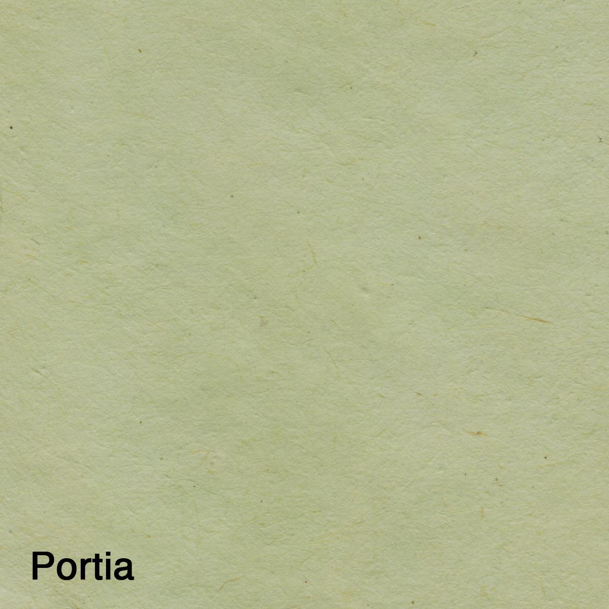 Portia-2.jpg