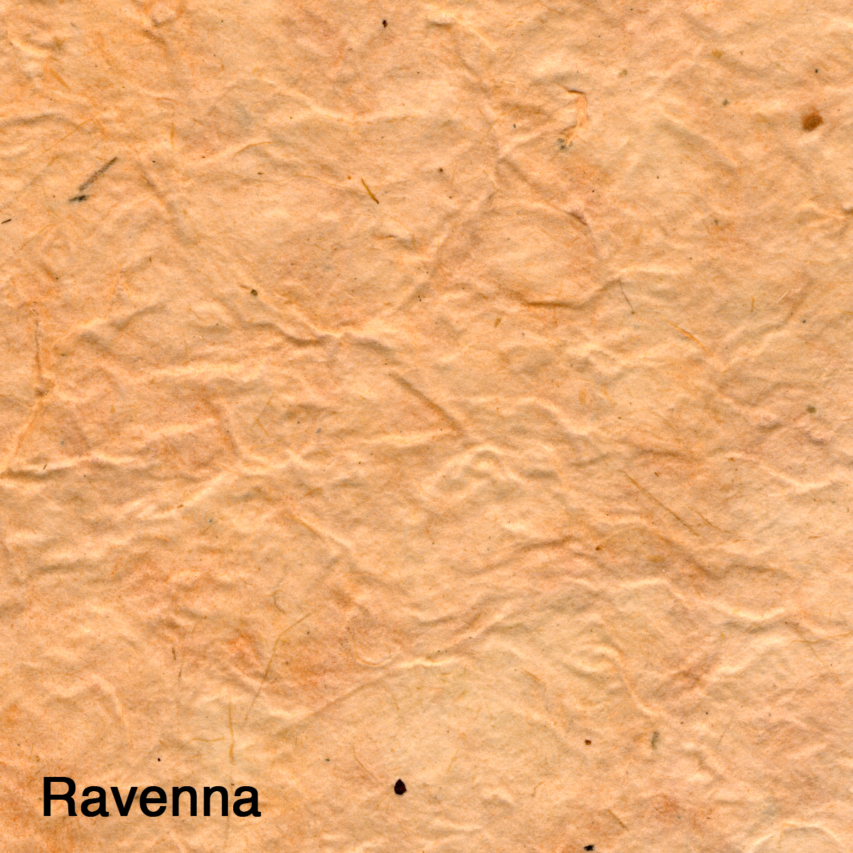 Ravenna.jpg