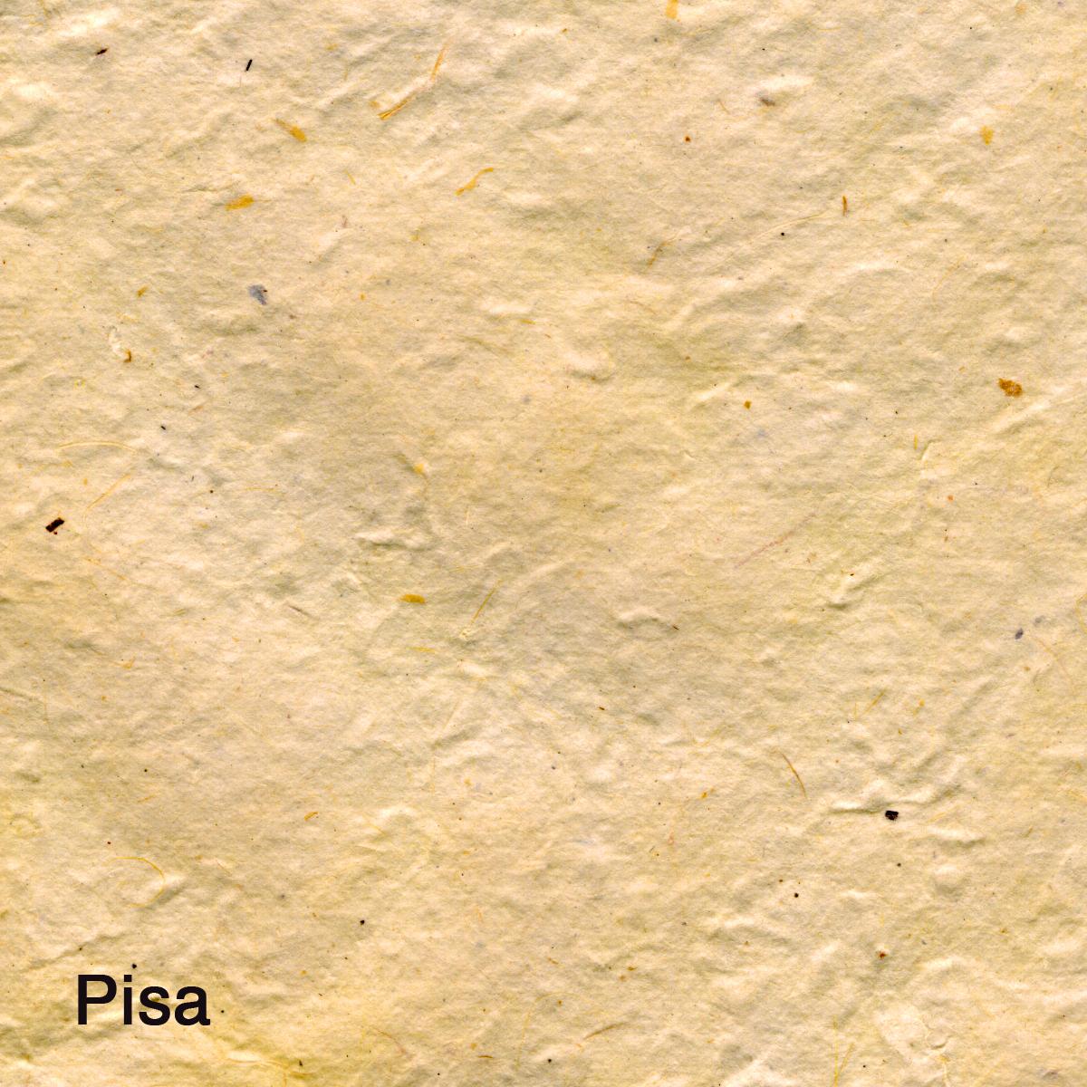 Pisa009.jpg