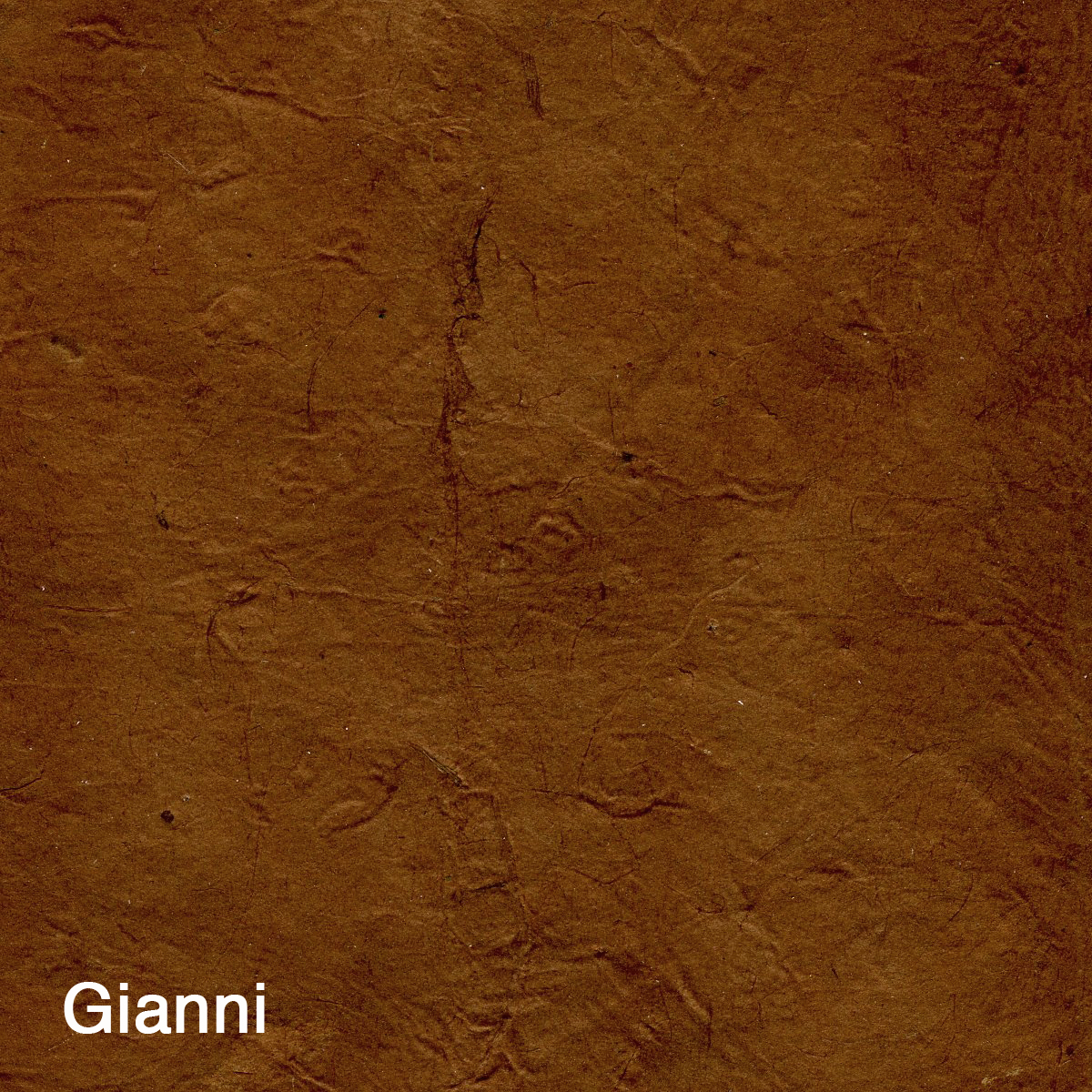 Gianni.jpg