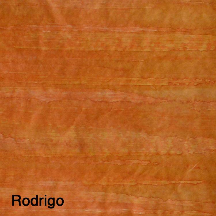 Rodrigo2.5.jpg