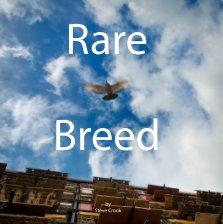 rare breed cover.jpg