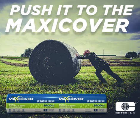 Push It to the MAXICOVER.jpg
