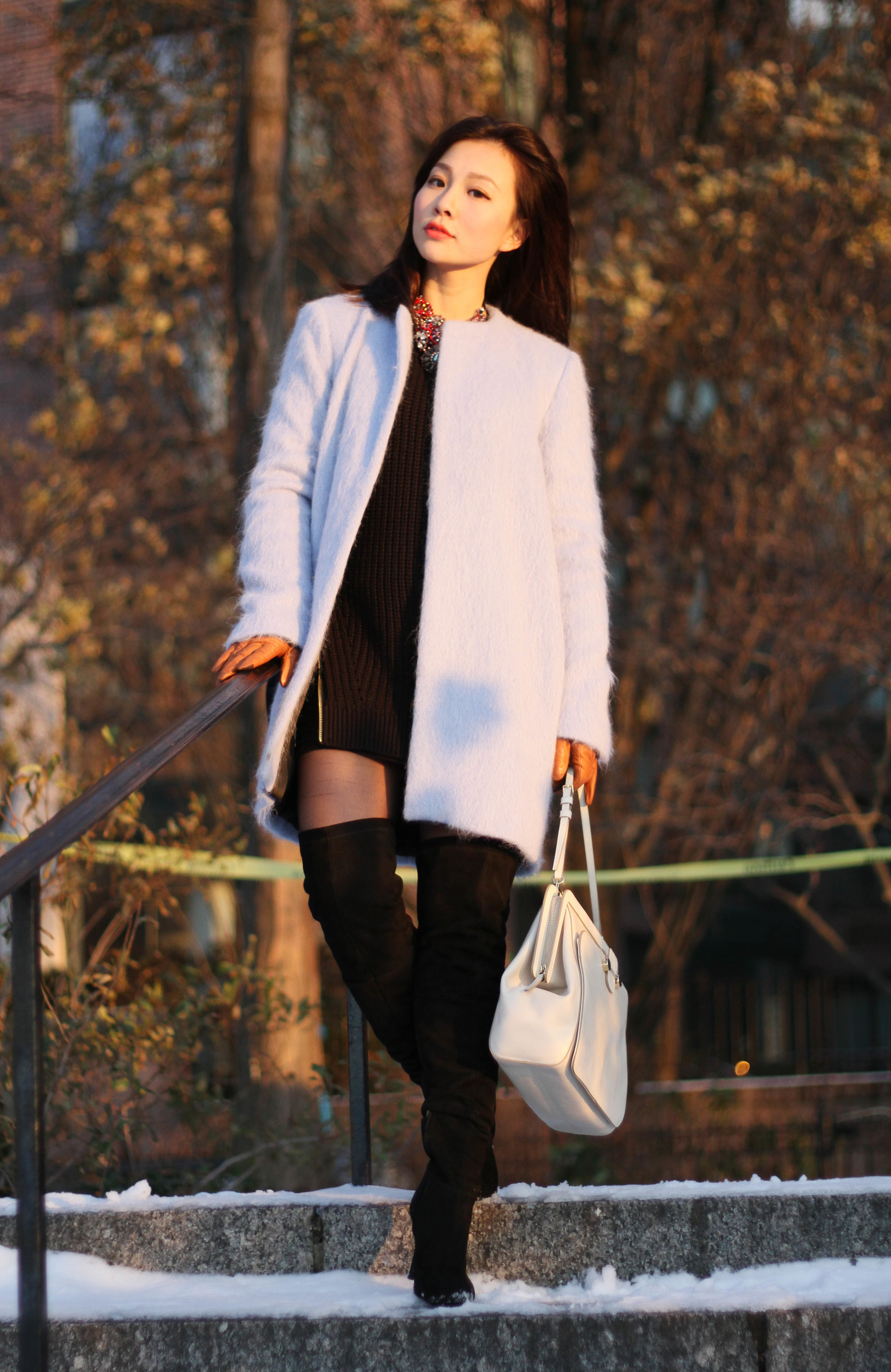 ladylike coat.JPG