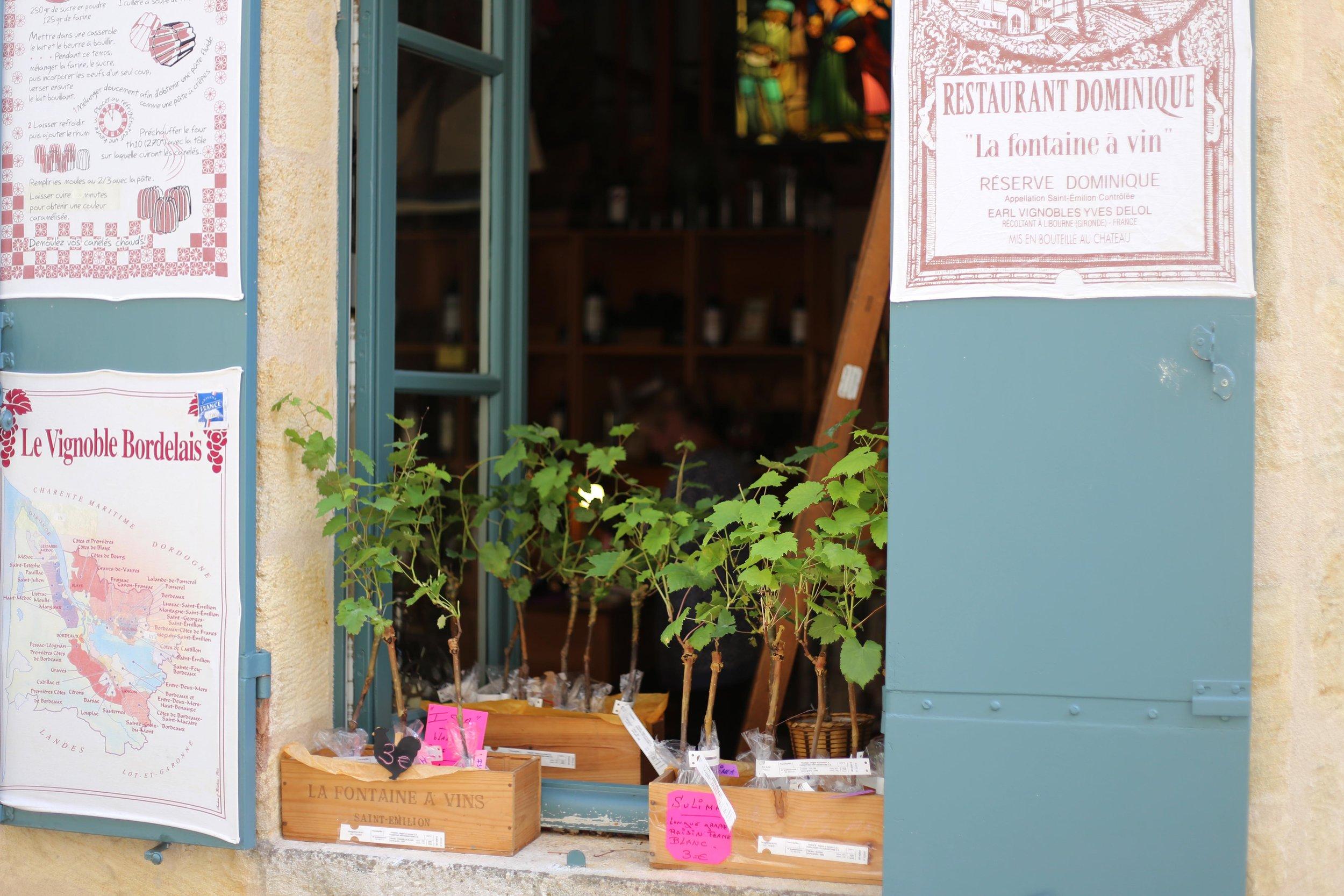 medieval village of Saint-Emilion bordeaux shop.JPG