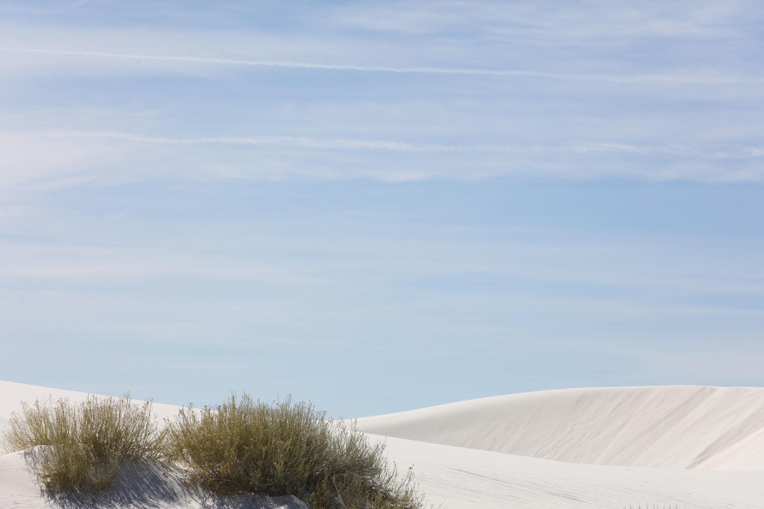 White Sands National Monument 7.JPG