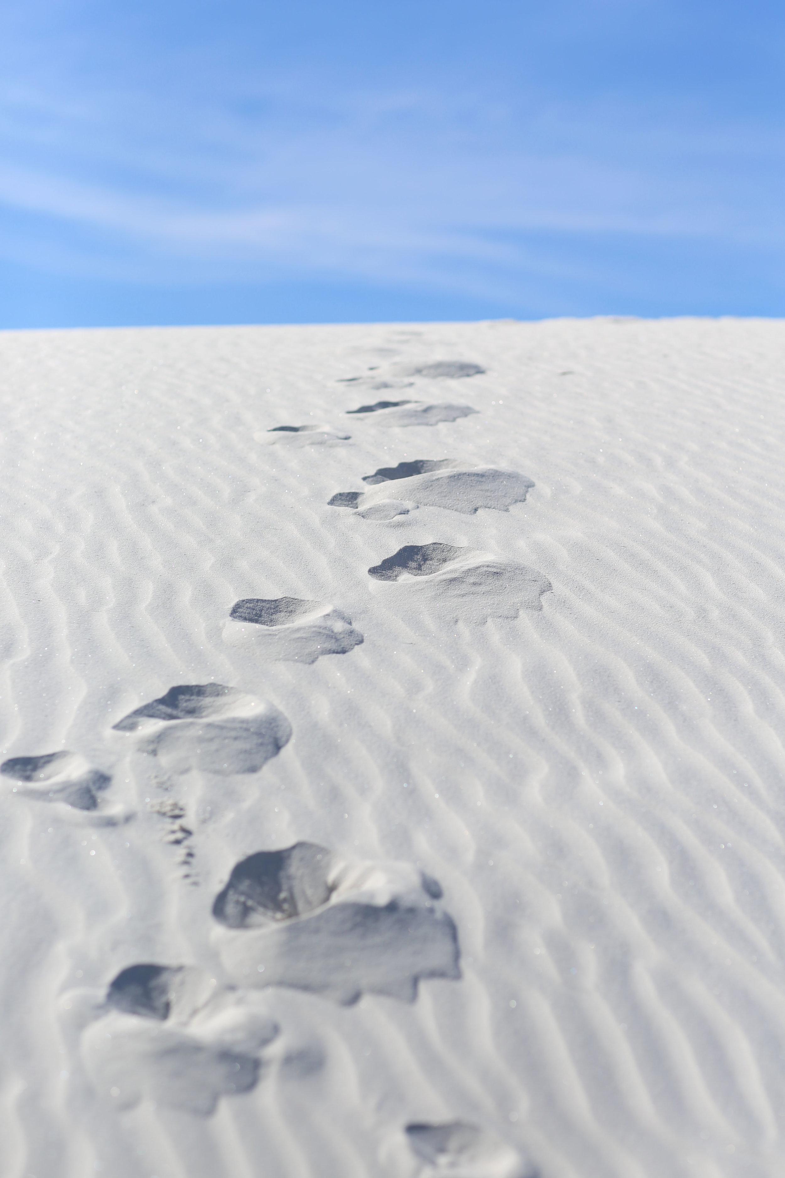White Sands National Monument 6.JPG