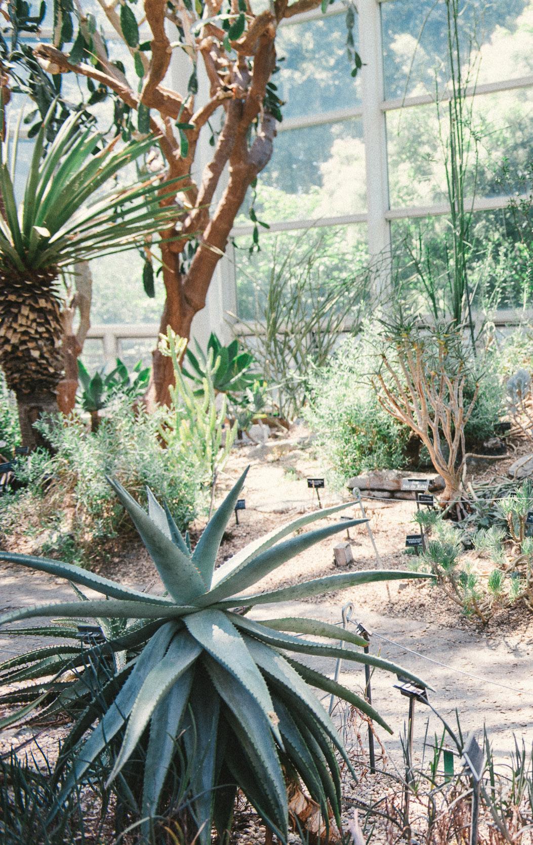 Tracy Botanical Garden-59.jpg