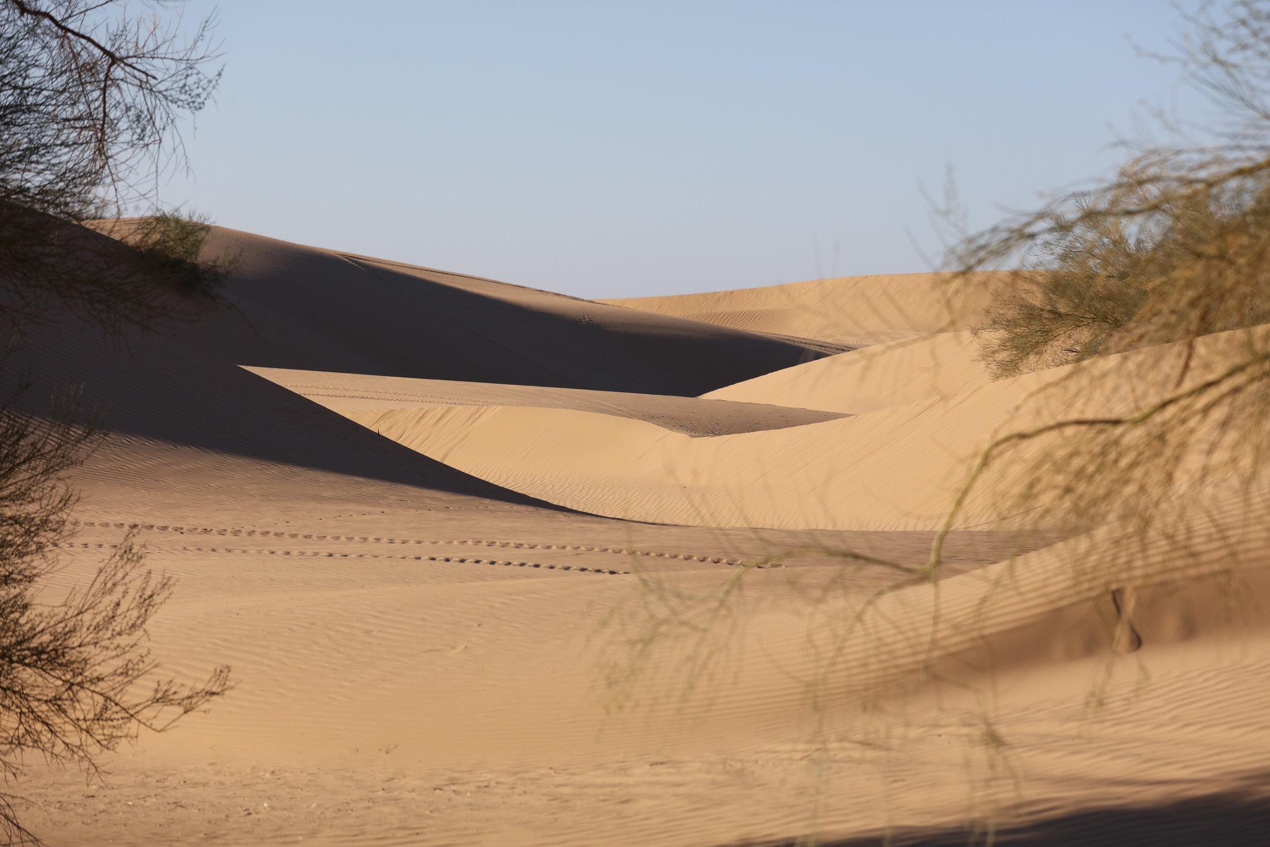 imperial sand dunes blogger.jpg