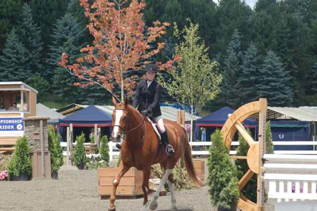 Archway Horse Shows041.jpg