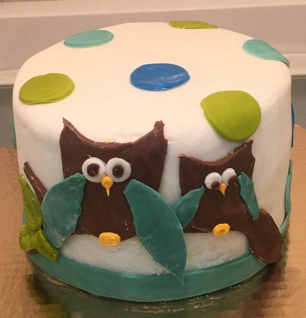 Owl Fondant Cake.jpg