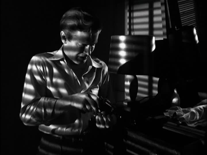 290. He Walked by Night (1948)
