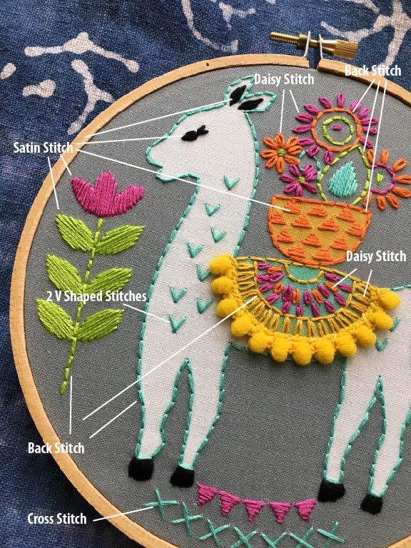 llama close up-01.jpg