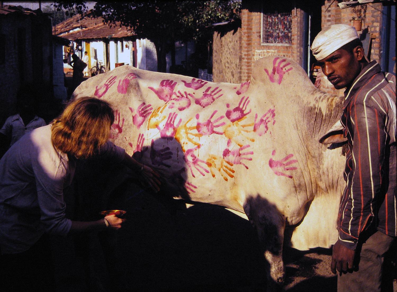 painting bullock photo 1981