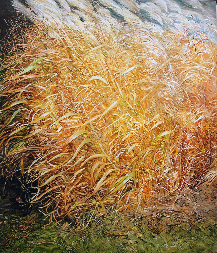 wildly blowing pampas grass 2008 acrylic 44x52