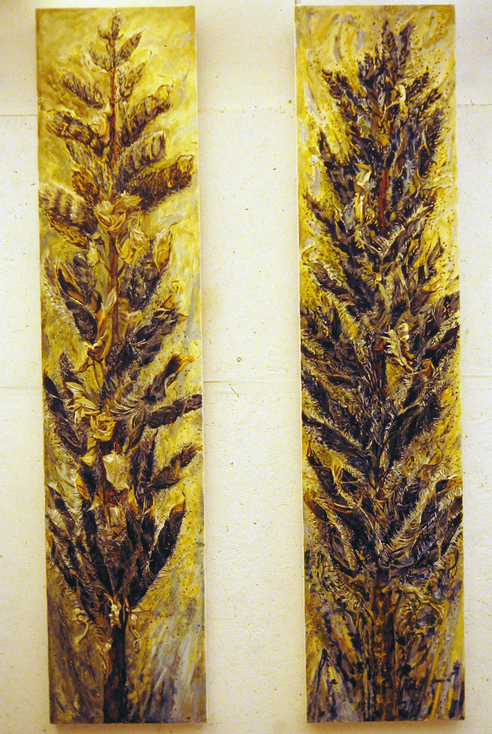 lupin seeding 1 and 2 1989 oil 72x16
