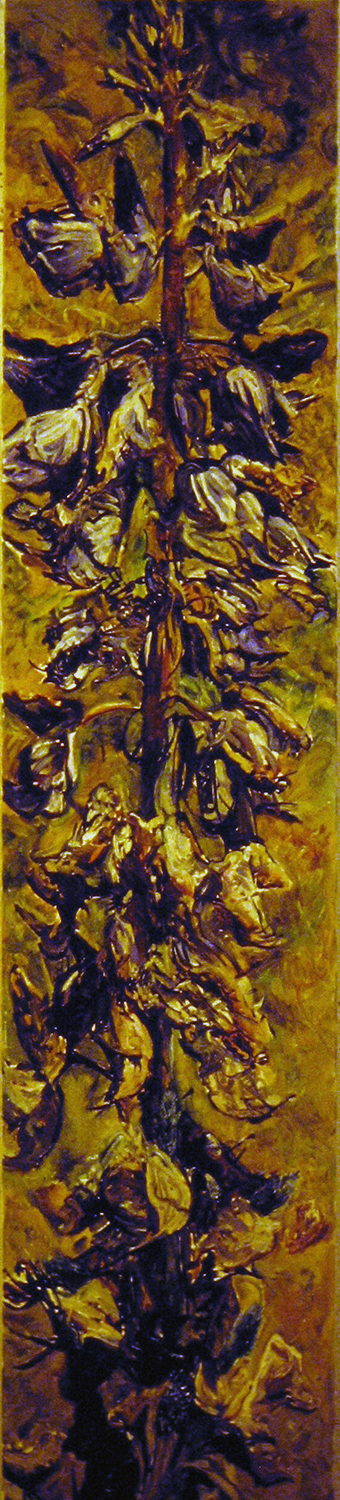 lupin flowers dying pods emerging 1988 oil 72x42