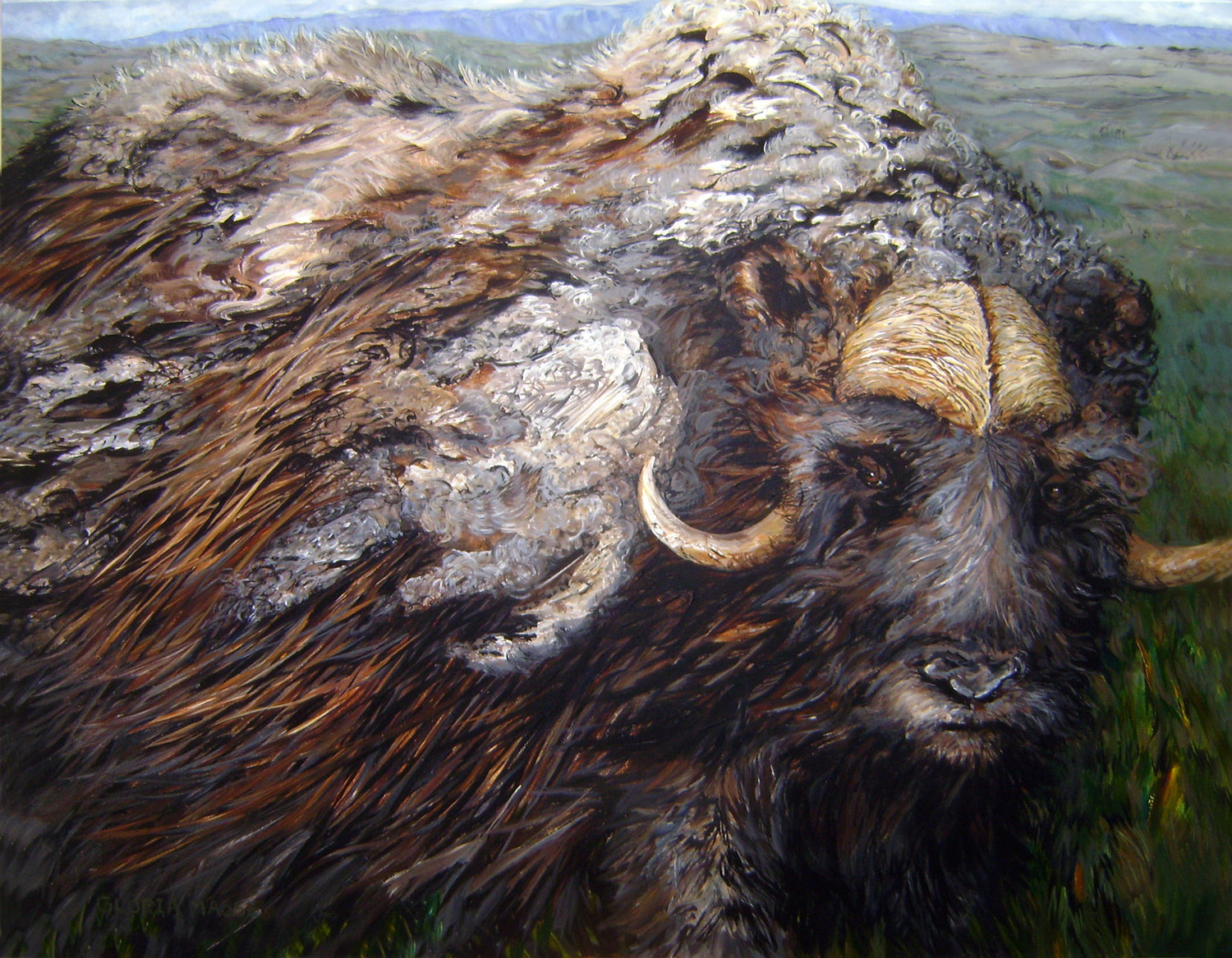 arctic musk oxen in spring 2012 acrylic 44x56