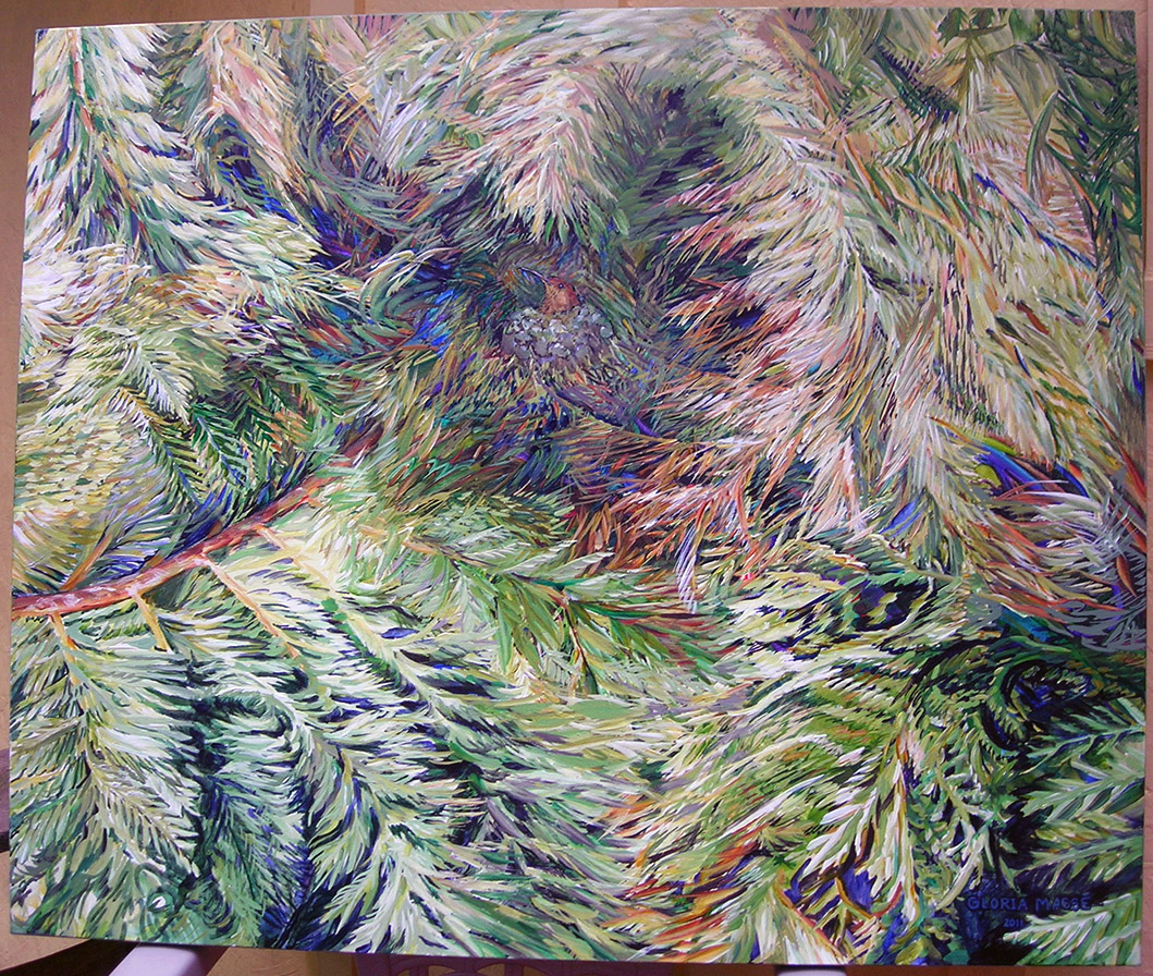 hummingbird nest in cedar 2011 acrylic 36x30