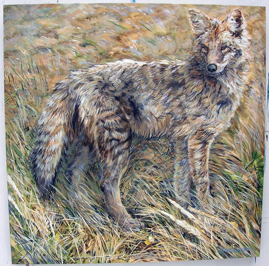 whistler coyote 2006 acrylic 36x36