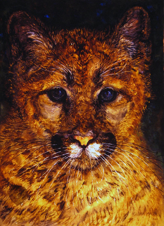 young cougar 2003 watercolour 30x22