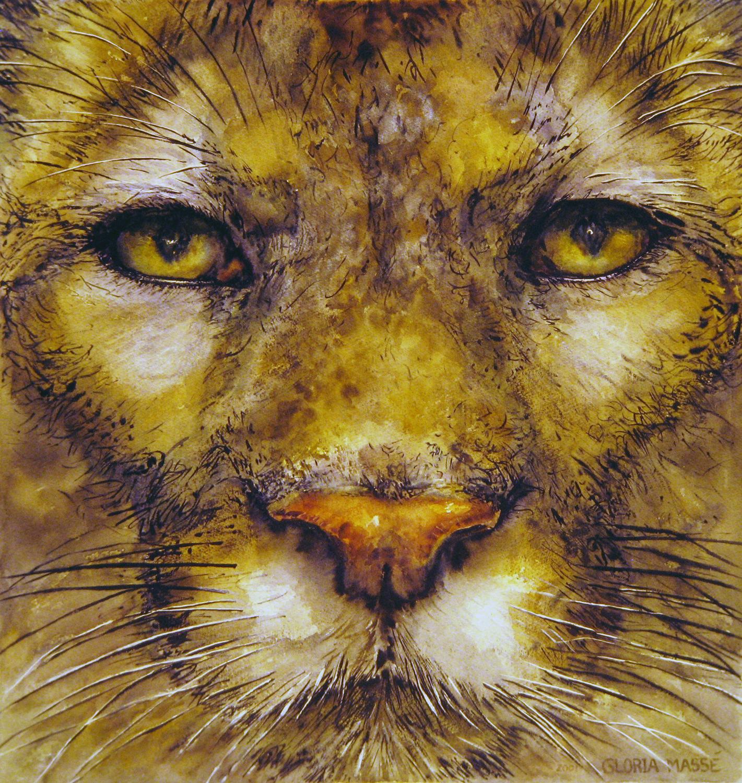 cougar gaze 2001 watercolour 21x20