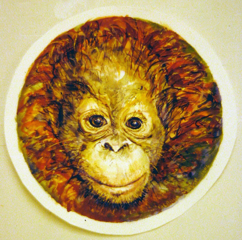 portrait baby orangutan 1996 watercolour 8in diameter