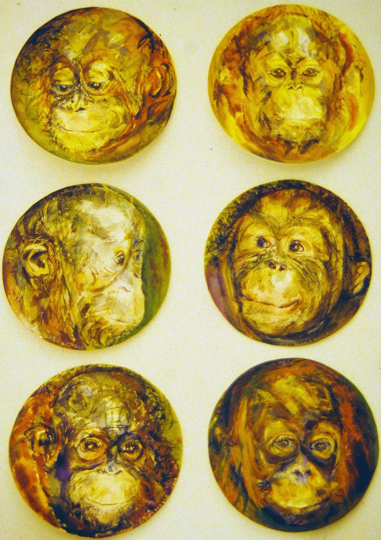 baby orangutans 1995 watercolour 8in diameter (2)