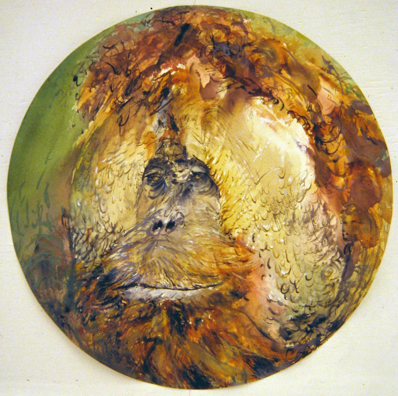 adult orangutan 1994 watercolour 23in diameter (22)