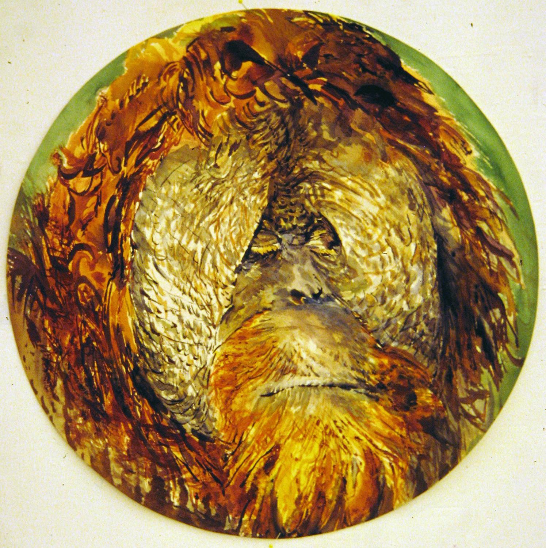 adult orangutan 1995 watercolour 23in diameter (23)