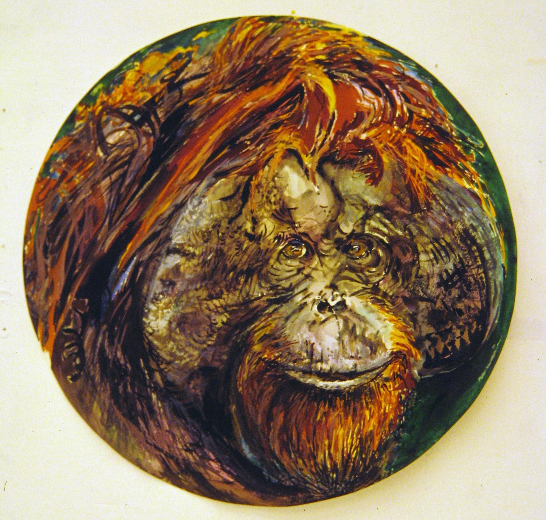adult orangutan 1994 watercolour 23in diameter (21)