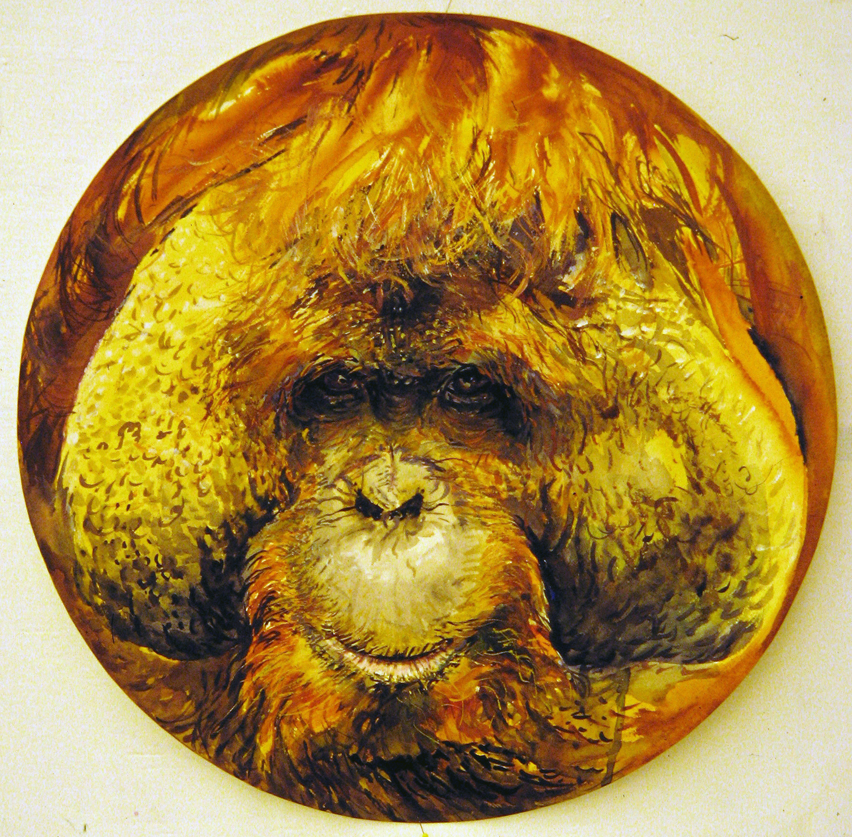 adult orangutan 1994 watercolour 23in diameter (20)