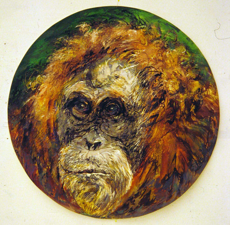 adult orangutan 1994 watercolour 23in diameter (19)