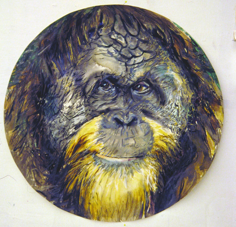 adult orangutan 1994 watercolour 23in diameter (16)
