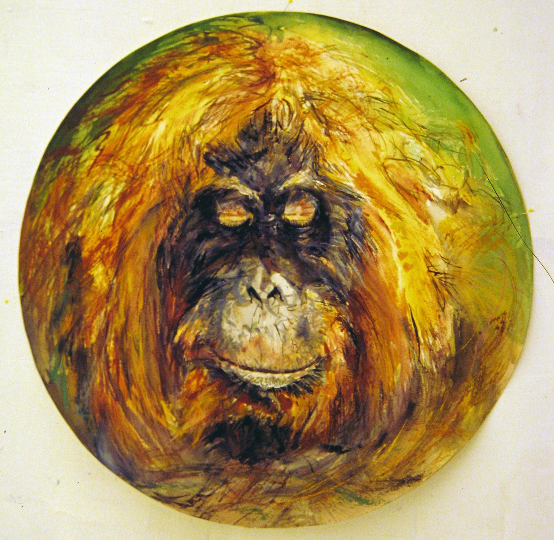 adult orangutan 1994 watercolour 23in diameter (14)