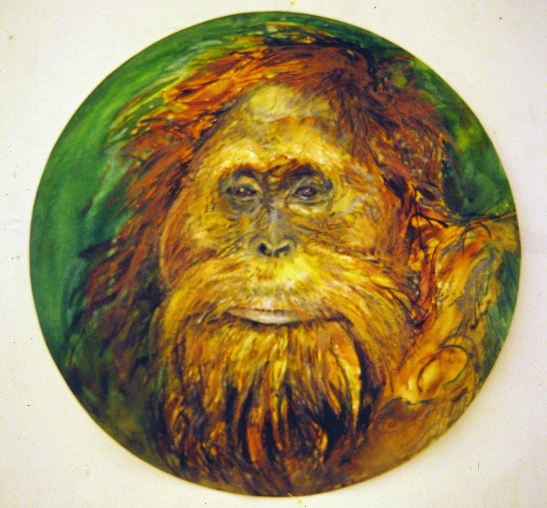 adult orangutan 1994 watercolour 23in diameter (13)