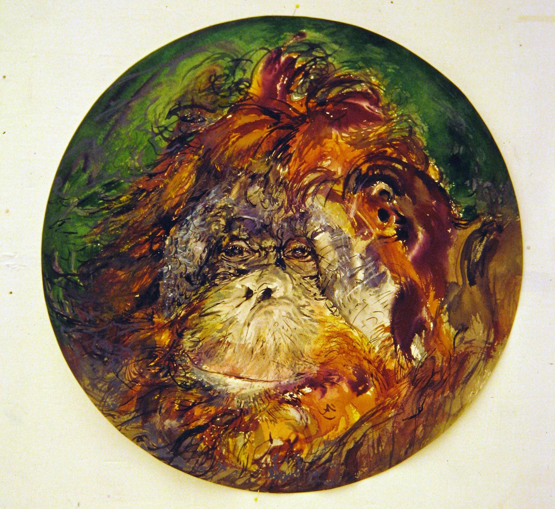 adult orangutan 1994 watercolour 23in diameter (10)