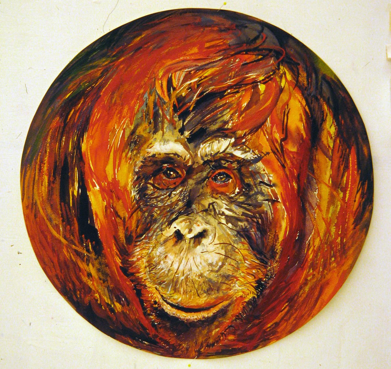 adult orangutan 1994 watercolour 23in diameter (9)