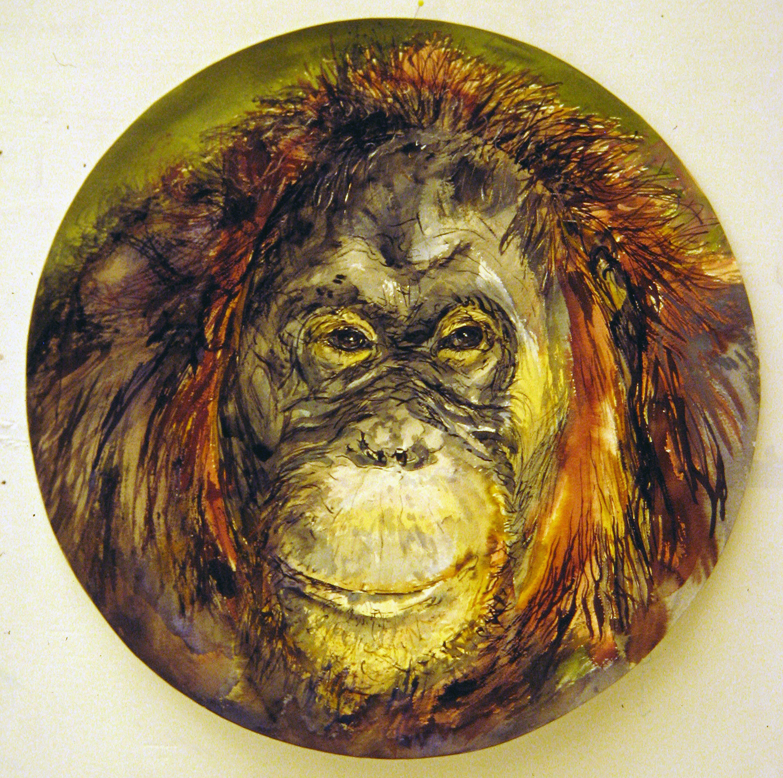 adult orangutan 1994 watercolour 23in diameter (6)