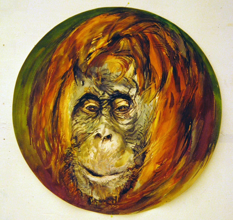 adult orangutan 1994 watercolour 23in diameter (5)