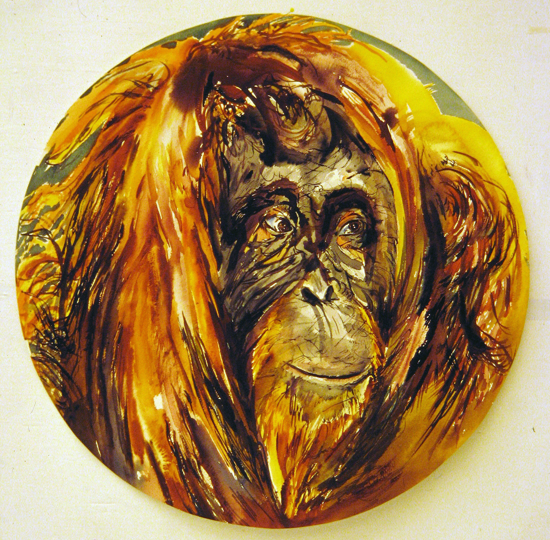 adult orangutan 1994 watercolour 23in diameter (4)