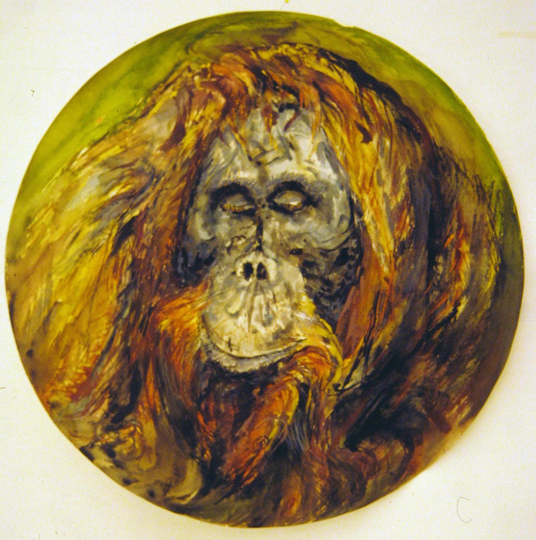 adult orangutan 1994 watercolour 23in diameter (2)