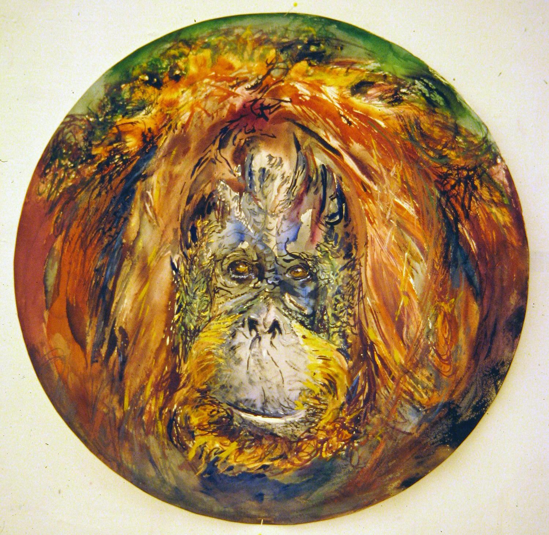 adult orangutan 1994 watercolour 23in diameter (3)