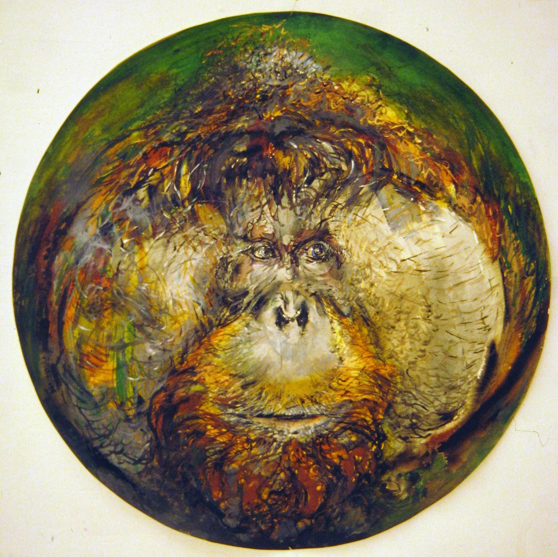 adult orangutan 1994 watercolour 23in diameter (1)