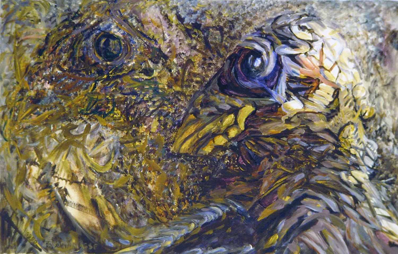 amazon birds hoatzin 1990 oil 24x30