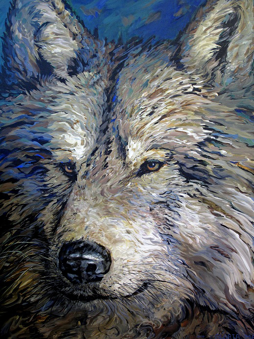 mountain wolf 2010 acrylic 30x36