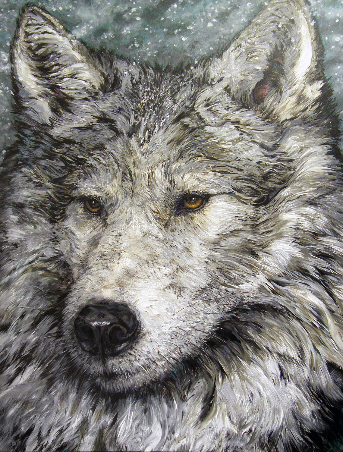 grey wolf in winter 2007 acrylic 44x52