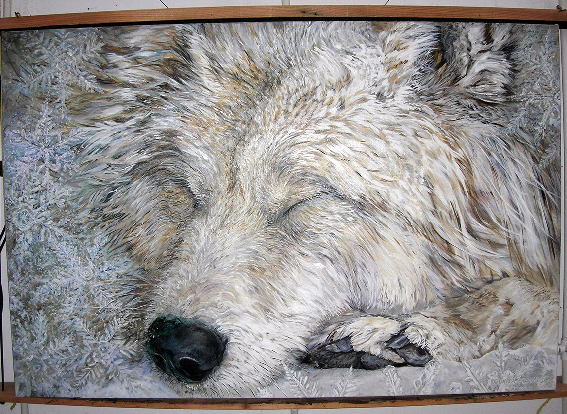 wolf sleeping in snow 2006 acrylic 60x40