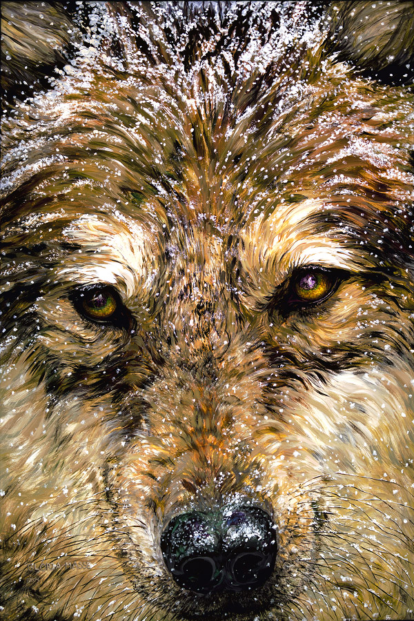 winter wolf 2004 acrylic 60x40