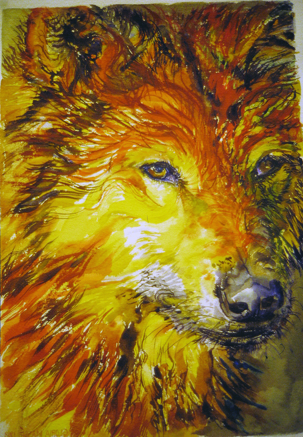 red gold wolf 1998 watercolour 20x13